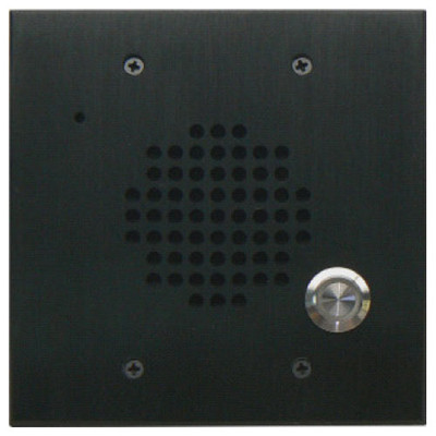 DoorBell Fon DP28 Extra Door Station, 2-Gang Masonry Box Mount