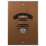 DoorBell Fon DP38 Extra Door Station, M&S Mount