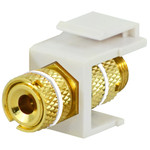 DataComm Binding Post Keystone Snap-In Connector, White Stripe, Almond