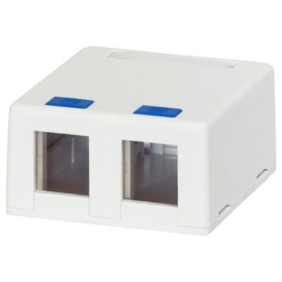 DataComm Keystone Surface-Mount Box, 2-Port, White